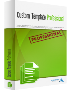 Custom Template Professional